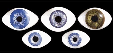 Mắt thay đổi kích thước theo tuổi tác
