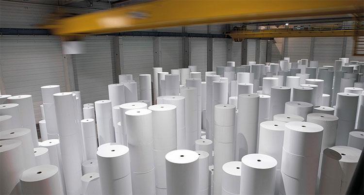 Người ta có thể sản xuất được bao nhiêu giấy từ một cái cây?