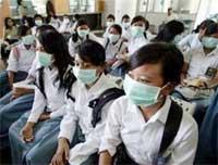 Cúm gia cầm làm hại du lịch hơn cả khủng bố