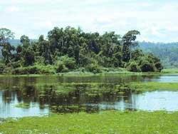 Khu Bàu Sấu được công nhận là vùng đất ngập nước