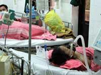 Chưa khẳng định 2 trường hợp tử vong ở Quảng Bình là do cúm gia cầm