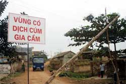 Bệnh nhân nghi nhiễm H5N1 ở Bắc Giang tái sốt cao