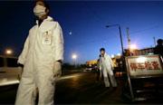 Trung Quốc không thể kiểm soát dịch cúm gà vì văcxin giả