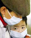 Cách nhận biết và phòng ngừa cúm gia cầm trên người