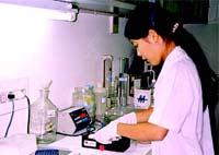 Virus H5N1 đã có những đột biến gen độc tính cao