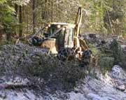 UN nói tốc độ phá rừng chậm lại