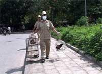 Hà Nội: xóa bỏ buôn bán gia cầm trong nội thành