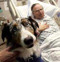 Chó giúp giảm stress cho bệnh nhân suy tim