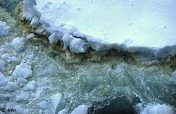 Nước đóng băng: nguồn tưới tiêu mới