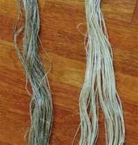 Quá trình phát triển của ngành dệt may