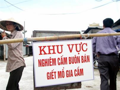 Khống chế được dịch ở Hà Nội và Bạc Liêu