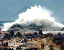 Hiệu ứng nhà kính đưa Trái Đất về kỷ Jura