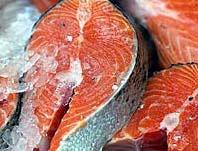 Chất ô nhiễm từ cá dầu có thể gây bệnh tiểu đường