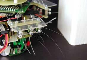 Chuột robot ngửi bằng râu