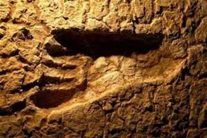 Úc phát hiện dấu chân người thời kỳ băng hà