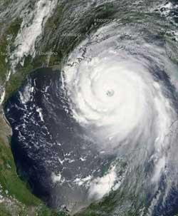 Những sự kiện lớn về môi trường trong năm 2005