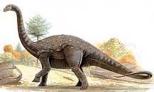 Phát hiện bộ xương loài khủng long cách đây 71 triệu năm