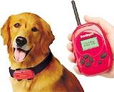 Các giải Ignobel liên quan đến chó