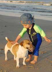 Bí mật về loài chó: Cố gắng học nói tiếng người!