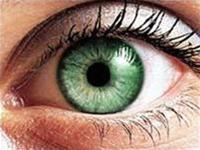 Khám phá ra gene chủ chốt gây suy giảm thị lực
