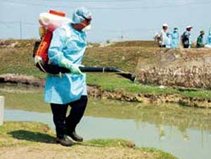 Các địa phương tổ chức vệ sinh môi trường phòng cúm A/H5N1