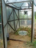 Hệ thống cảm nhiệt tự động để ươm cây con