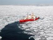Bắc cực nổi sóng