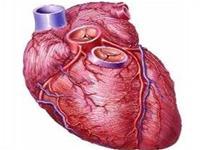 Suy tim: Những điều cần biết