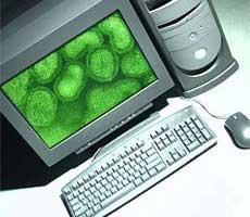 Virus máy tính: 20 năm nhìn lại