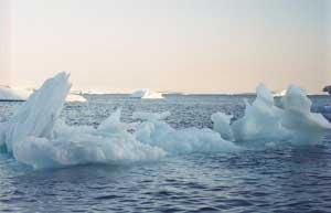 Bắc cực không còn băng vào 2100?