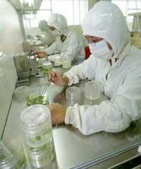 Nhật và Trung Quốc tăng đầu tư cho khoa học