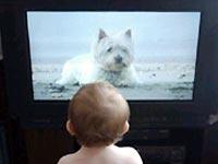 Trẻ dưới 2 tuổi không nên xem TV