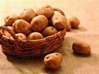 Tinh bột khoai tây tăng cường chất lượng giấy