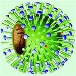 Hội chứng cúm B và những điều cần lưu ý