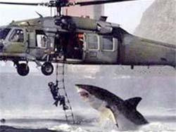 Khoa học kỹ thuật hiện đại: Cá mập = điệp viên