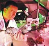 Làm sao ngăn chặn hiểm họa nấm vi khuẩn trong khoang nhiên liệu máy bay ?