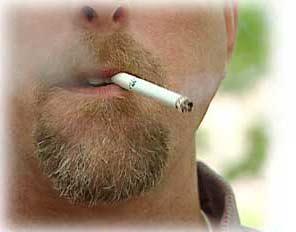 Trong khói thuốc lá có thuốc trừ sâu