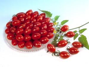 Ăn cà chua nấu chín chống được bệnh tim mạch