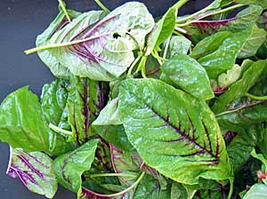 Hoa quả không thể thay thế cho rau