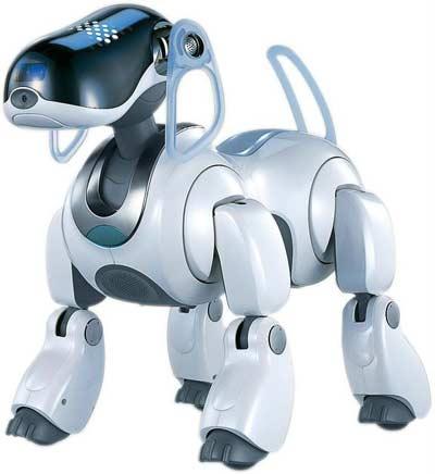 Thêm 5 robot danh giá nhất hành tinh