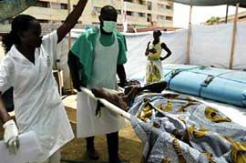 Angola: dịch tả giết 1.200 người
