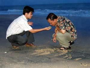 """Bờ biển Hàm Tiến - Mũi Né: """"Chất đen"""" từ đâu ra?"""
