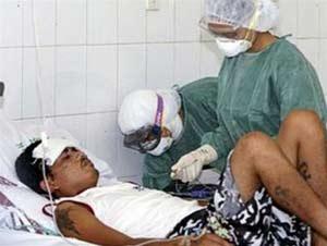 WHO: lây nhiễm H5N1 có thể do tiếp xúc quá gần và quá lâu