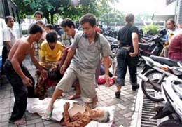 Indonesia: Số nạn nhân chết do động đất lên hơn 3.500 người