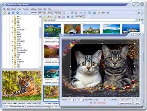 FastStone Image Viewer 2.6: Chương trình xem ảnh đa năng