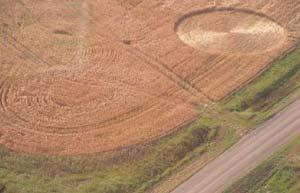 Một vòng tròn trên cánh đồng ở Canada