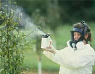 Các chất hoá học độc hại có thể gây bệnh di truyền