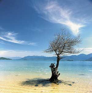 Khánh Hòa: Sẽ có thêm khu bảo tồn biển