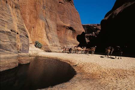 Các đụn cát ở Tchad ven sa mạc Sahara