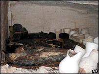 Phát hiện vòng hoa cổ trong mộ Ai Cập